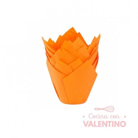 Tulipa Color Naranja - Pack 50 Un.