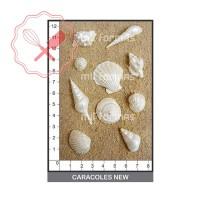 Molde Flexibles Caracoles New